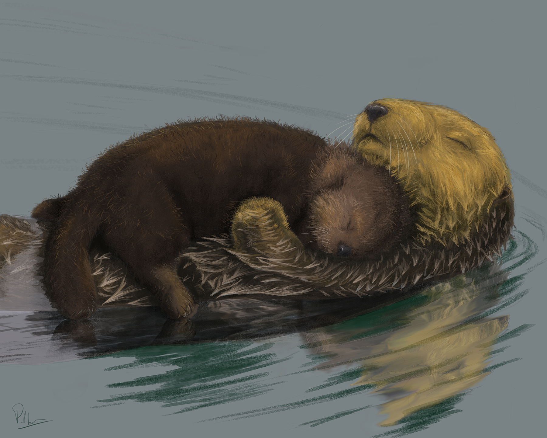 Otter mum and pup illustration by Six Foot Seven